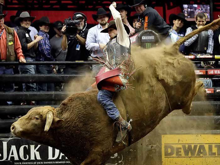 Bull-riding-